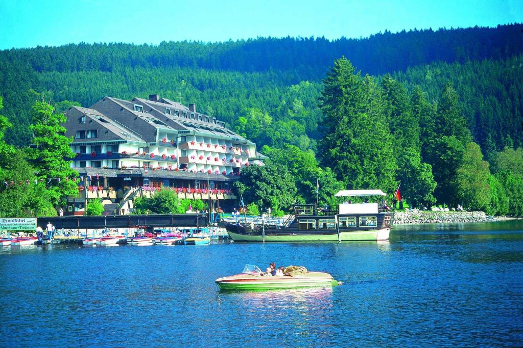 More about Maritim Titisee Hotel