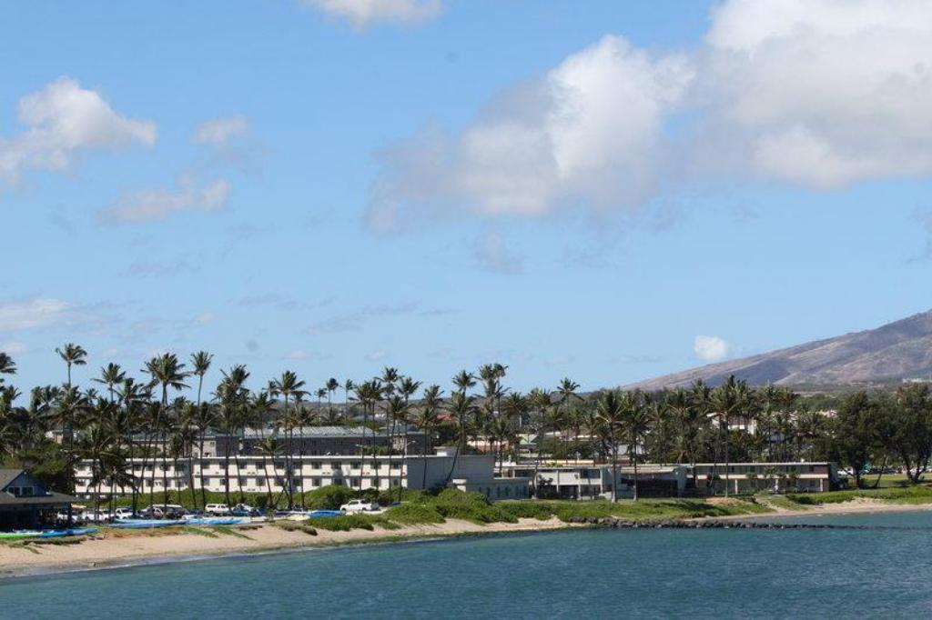 More about Maui Seaside Hotel