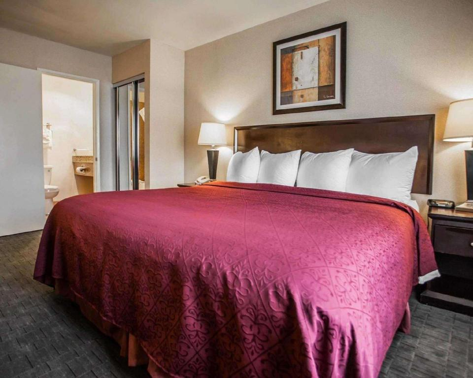1 King Bed Nonsmoking - Guestroom Quality Inn And Suites Anaheim At The Park