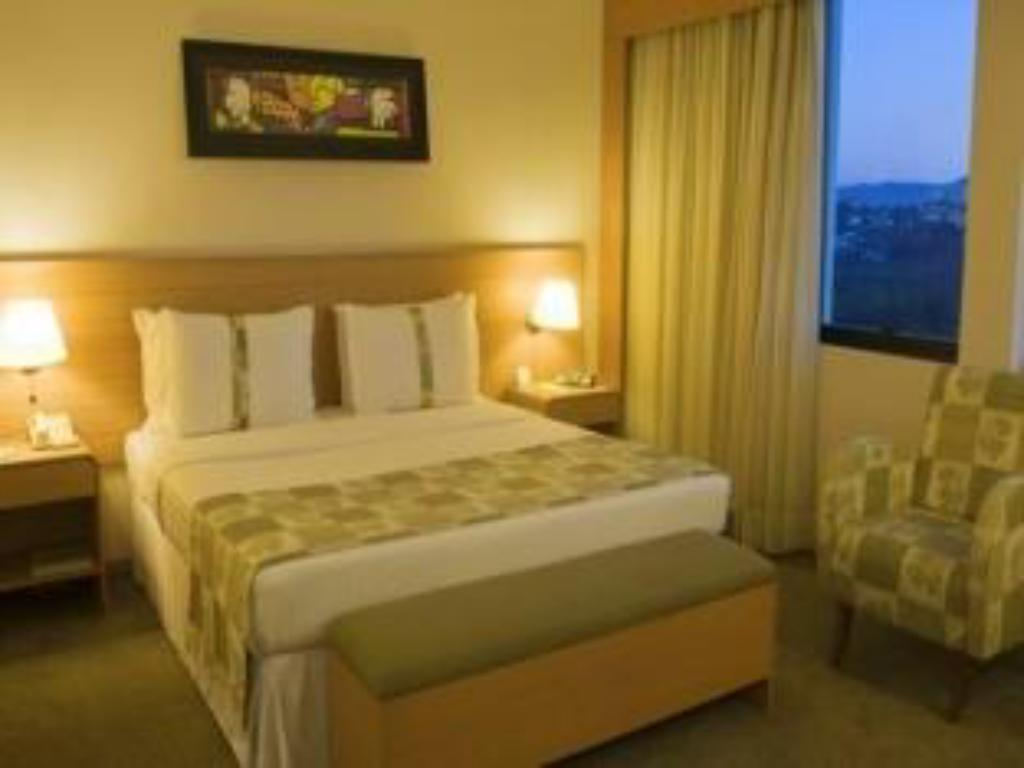 1 Double Bed Deluxe Non-Smoking - 床型 安海比公园假日酒店 (Holiday Inn Parque Anhembi)