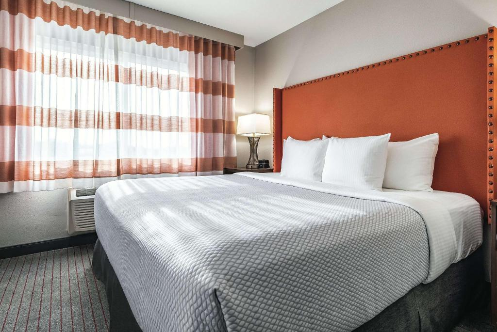 1 King Bed, Mobility Accessible Executive Room, Non-Smoking - Guestroom La Quinta Inn & Suites by Wyndham Seattle Federal Way