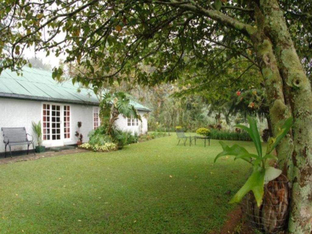 Garden View Tea Room Review