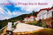 Village Live In Resort Chail