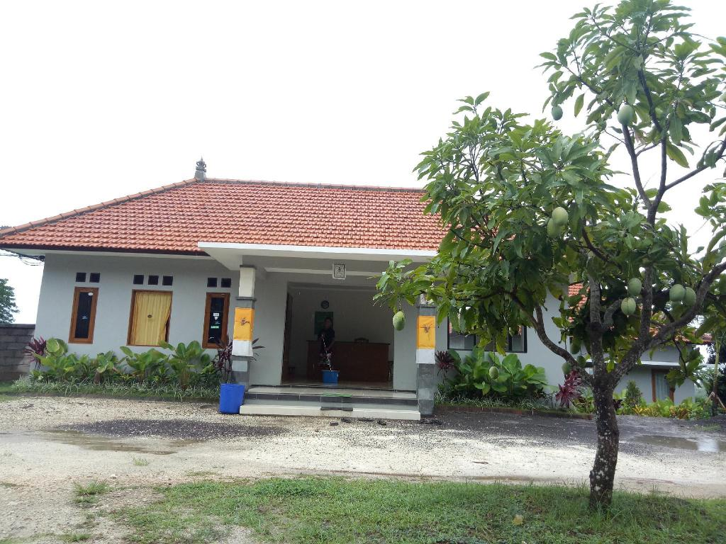 Lobi 3D Home Stay
