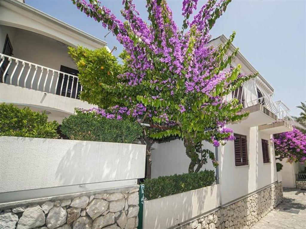 More about Beach Apartments Lavica