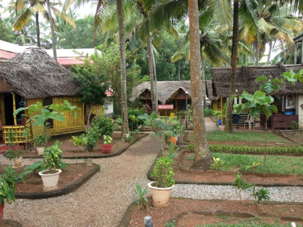 More about Bamboo Village