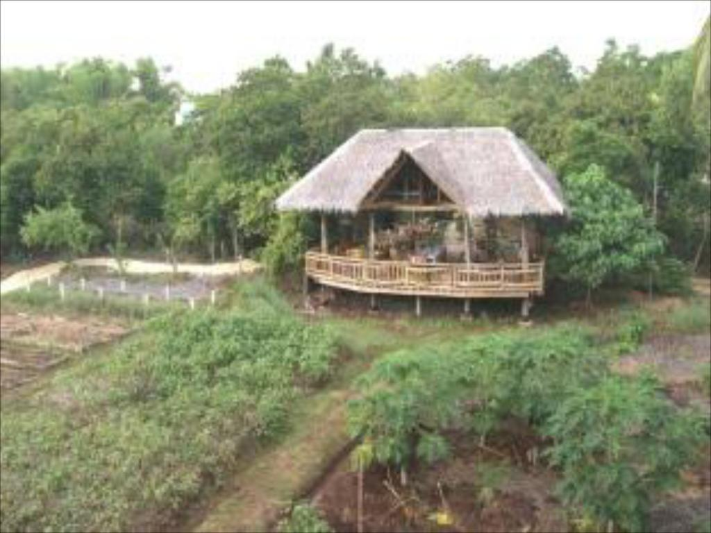 Bohol Coco Farm Hostel