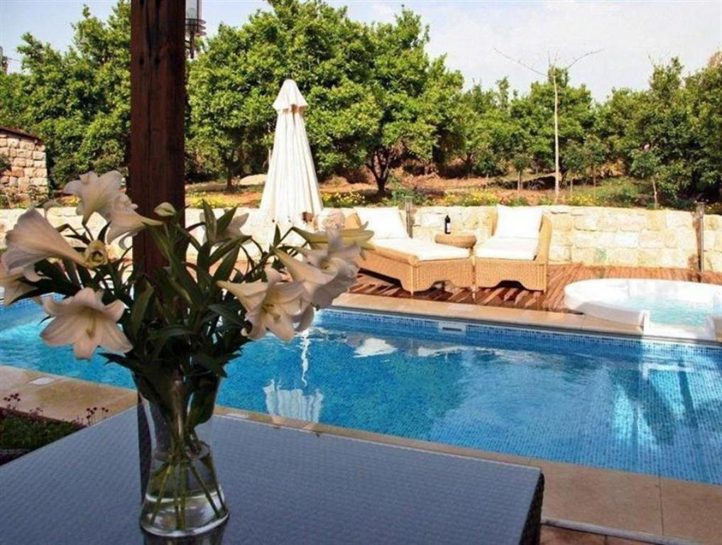 Piscine Pinchas & Gaston Holiday Home