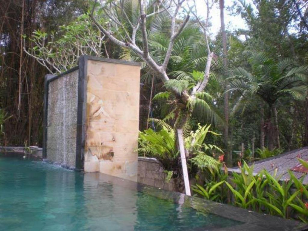 Swimming pool Igna Bungalows