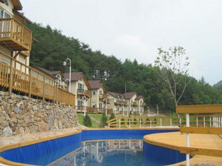 Swimming pool Dream Mountain Pension