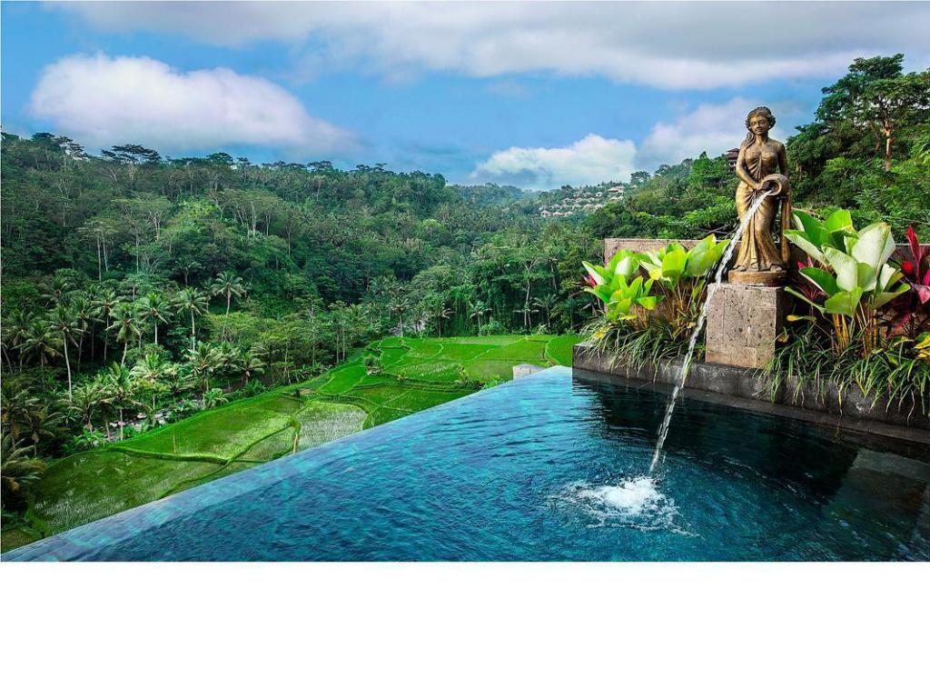 Deluxe Pool River View - Pool Black Penny Villas Ubud