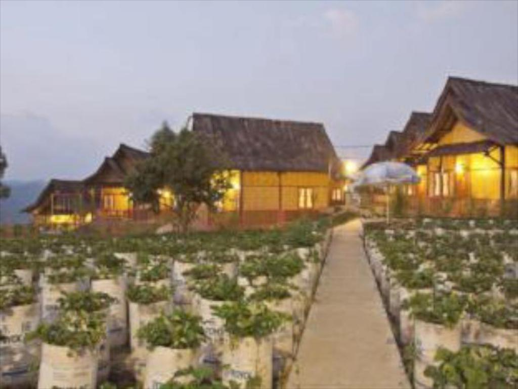 More about Sawung Gawir Restaurant and Bungalow Ciwidey