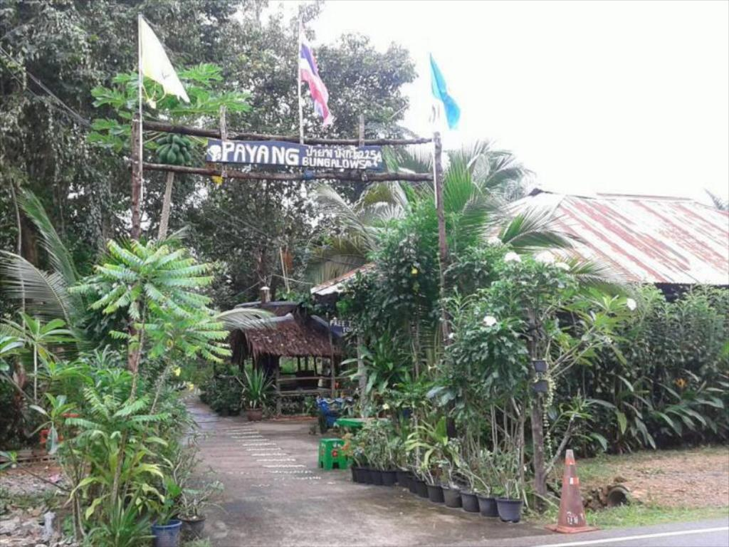 Payang Bungalow
