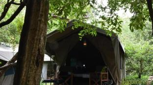 Mahoora Tented Safari Camp - Wasgamuwa