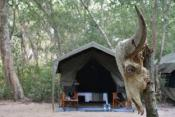 Mahoora Tented Safari Camp - Kumana