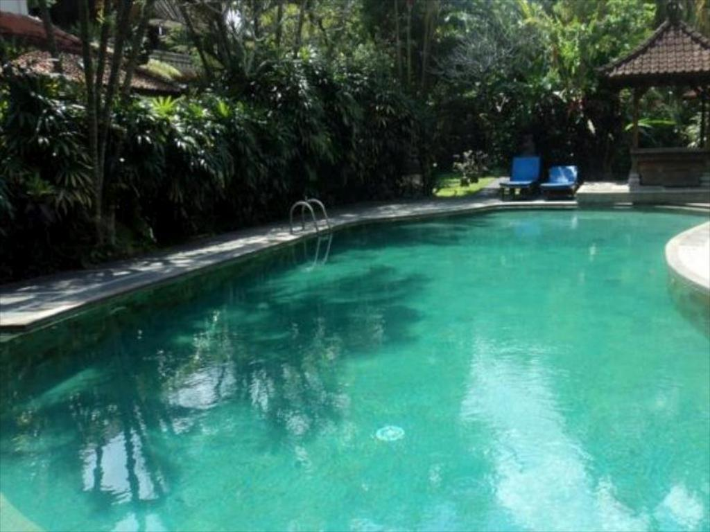 Swimming pool Villa Bhuana Alit