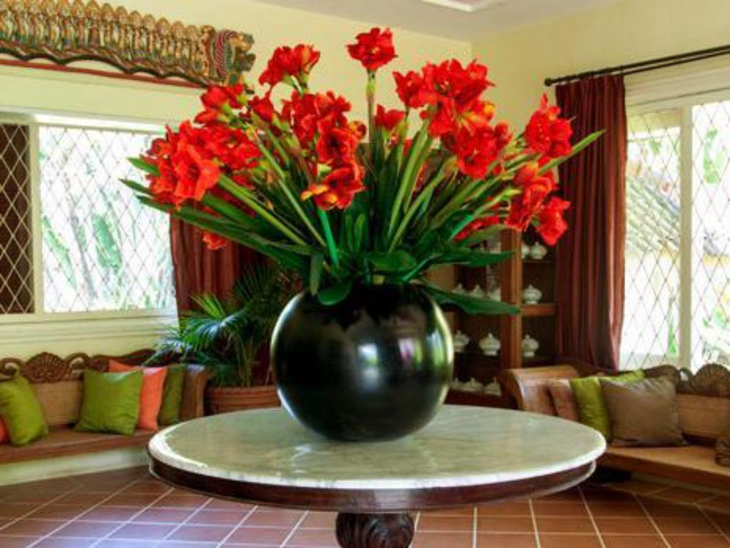 Fuajee Gladiola Guest House