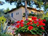 Bed and Breakfast Ulivi di Castello