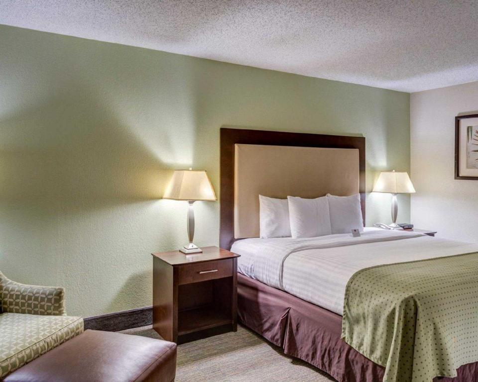 Non Smoking 1 Queen Bed - Guestroom Clarion Inn and Suites Conference Center Covington