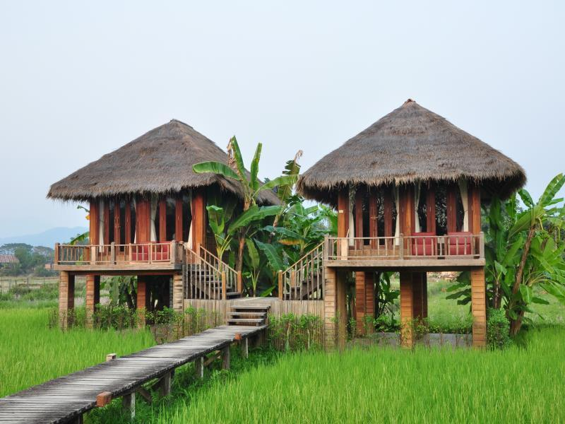 Villa with Paddy Field view