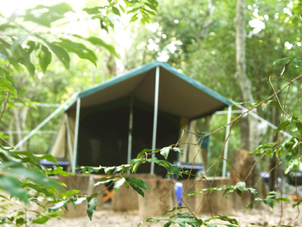 Entrance The Yala Camping