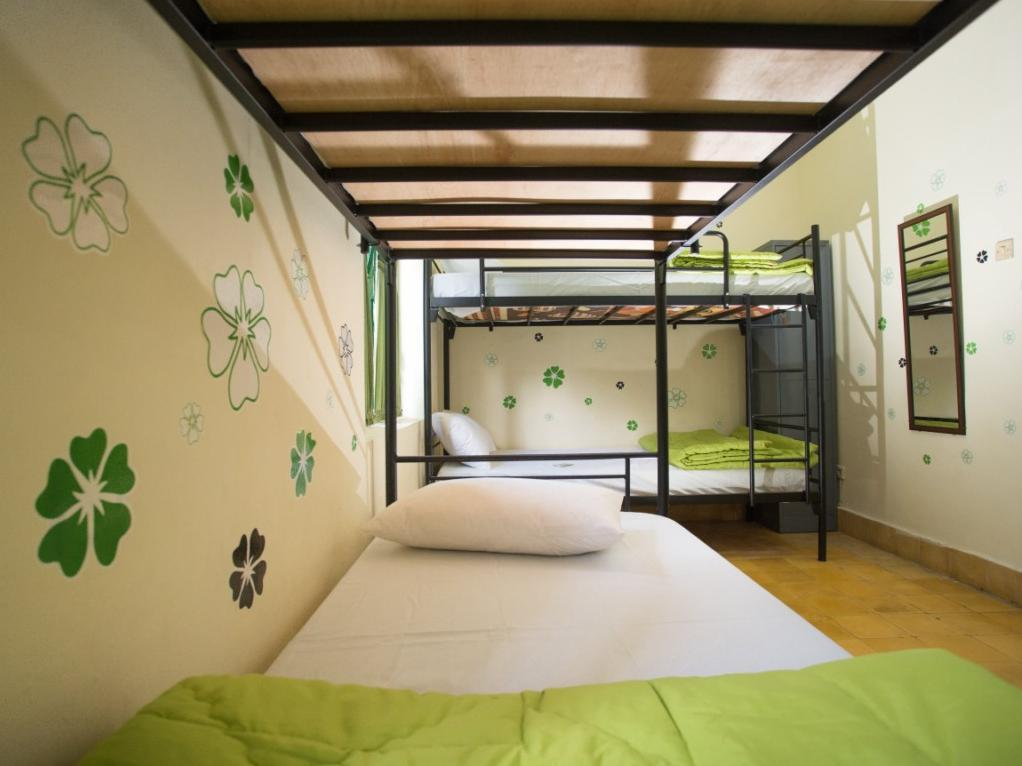 混合宿舍间的双层床 (Bunk Bed in Mixed Dormitory Room)