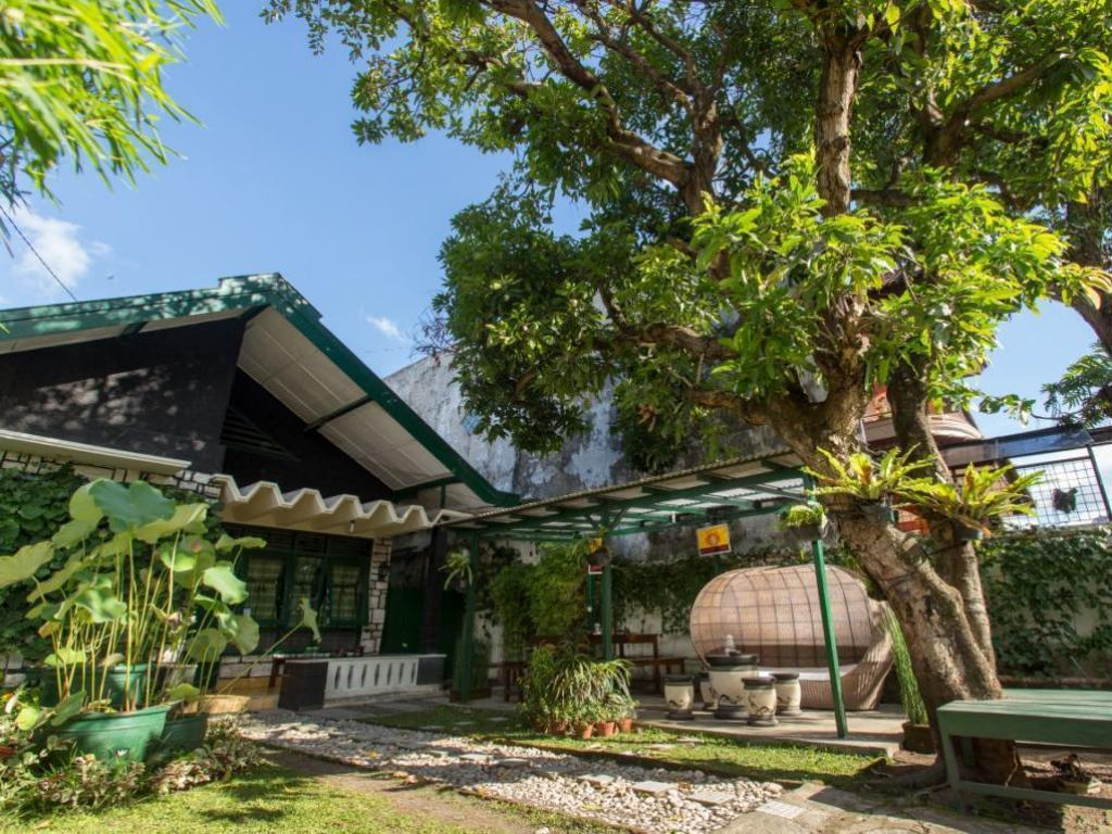 More about Mango Tree Dipudjo Homestay