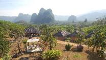 Khao Sok Hill Top Resort