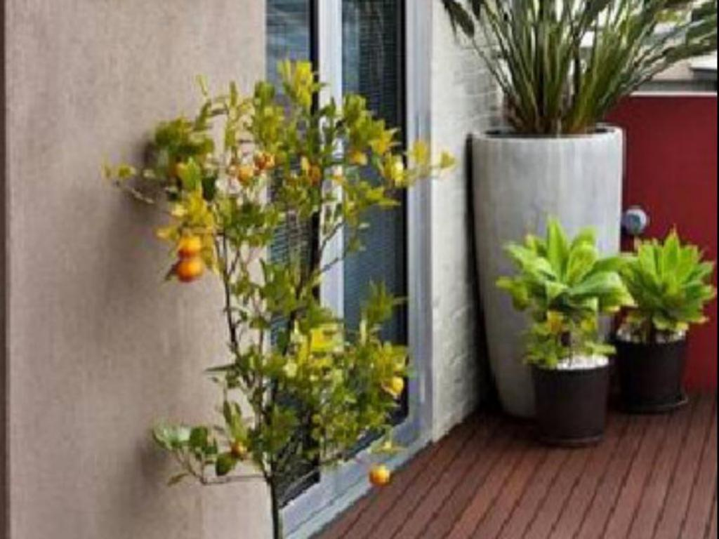 Balcony/terrace Two Four Two Boutique Apartments