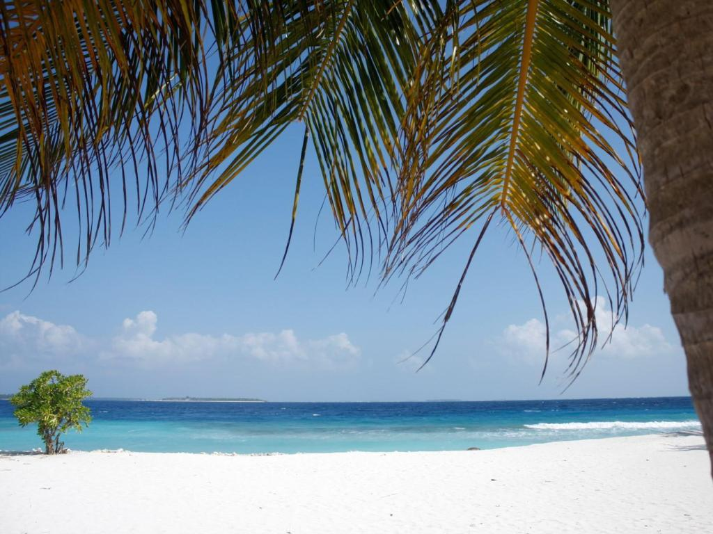 Beach Dharavandhoo Stay