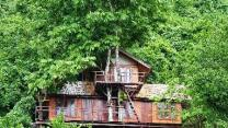 Elephant Adventure Village Tree House