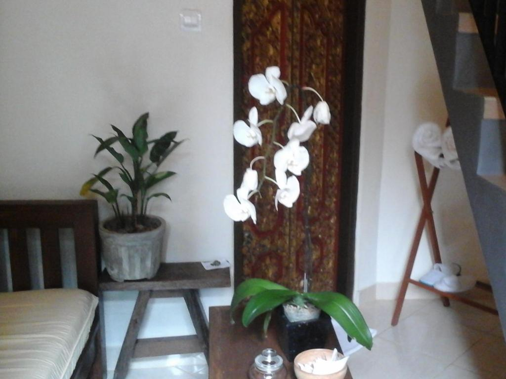 More about Corner Guest House Ubud
