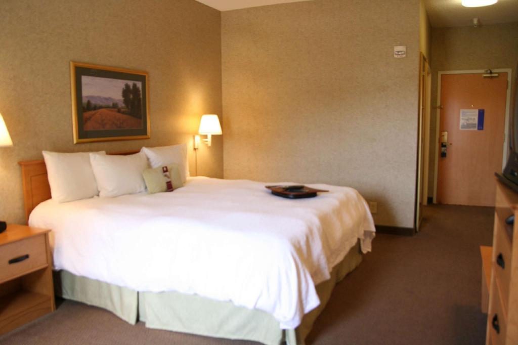 1 King Bed Non-Smoking - Guestroom Hampton Inn & Suites Kalamazoo-Oshtemo