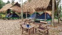 Tent Stay in Chiang Rai
