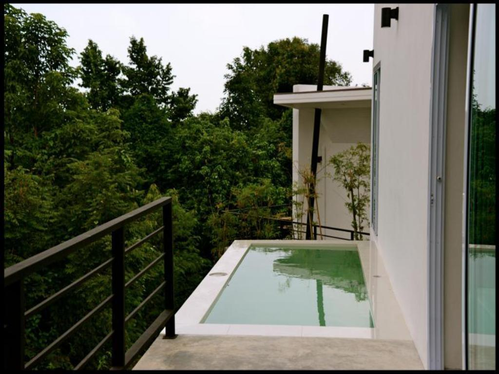 Swimming pool Villa Green Mango by Design Square