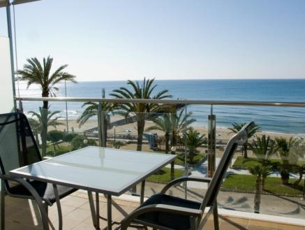 Double or Twin Room with Terrace with Sea View (2 Adults)
