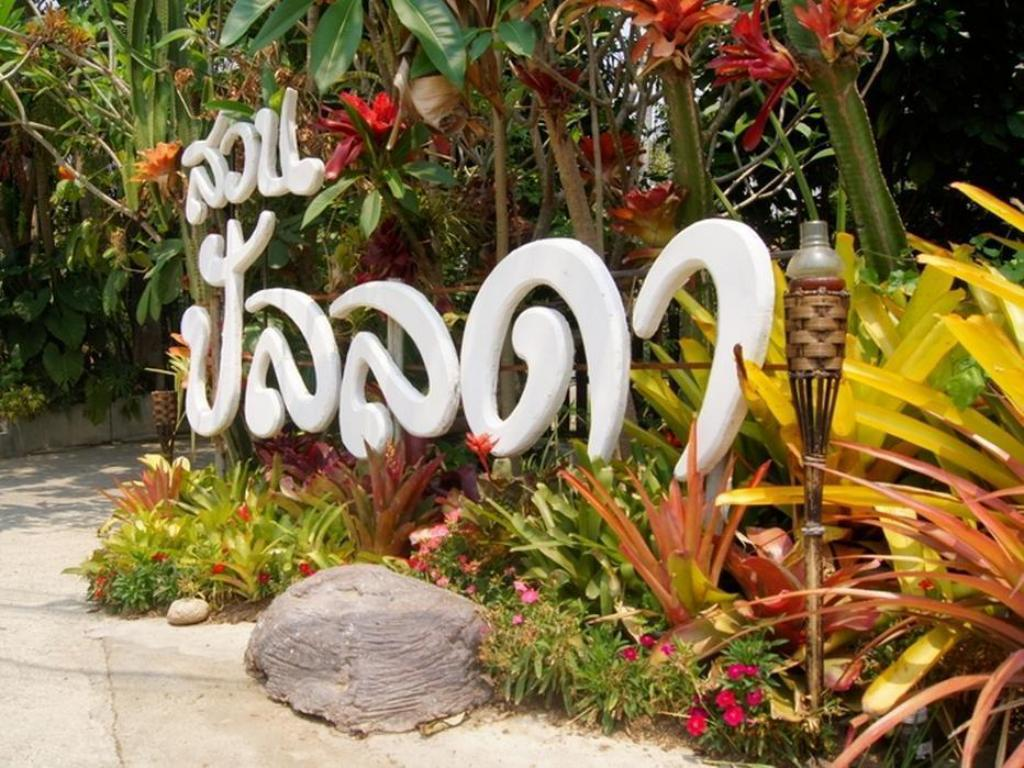 More about Pallada Bromeliads Resort