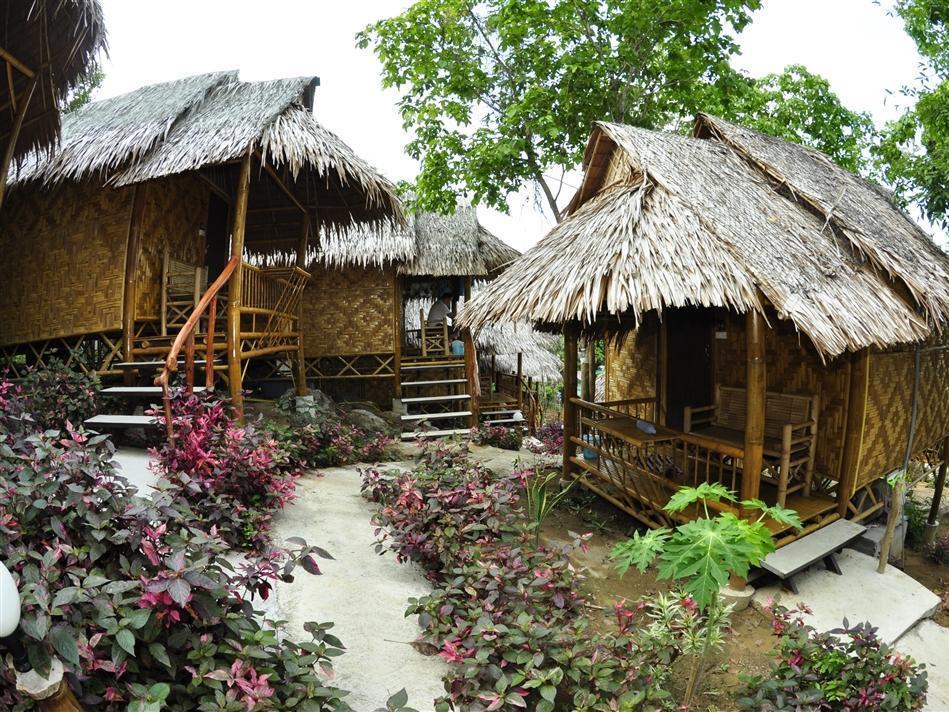 phi phi bungalows cheap