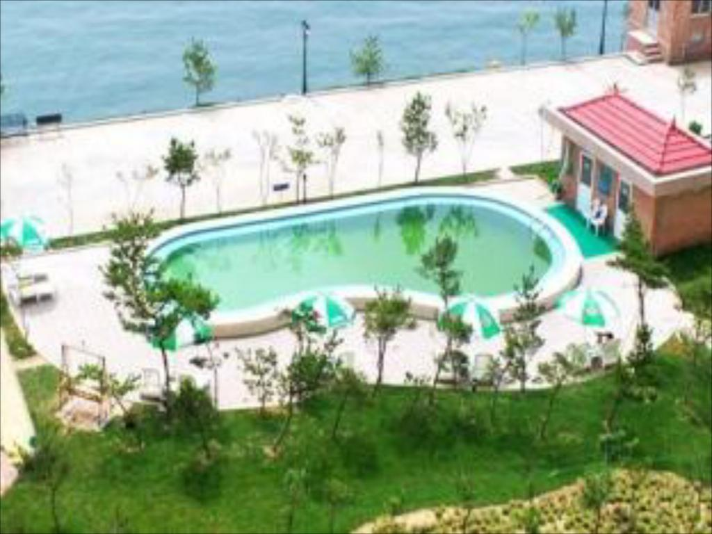 Pool Weihai Qiming Holiday Hotel