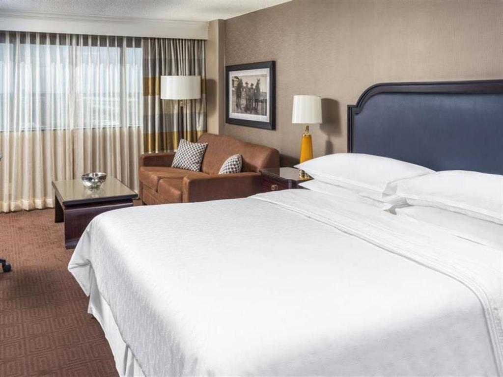 Traditional King - Bed Sheraton North Houston at George Bush Intercontinental