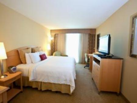 1 King Bed Executive Level Non-Smoking Crowne Plaza Hotel Orlando-Universal