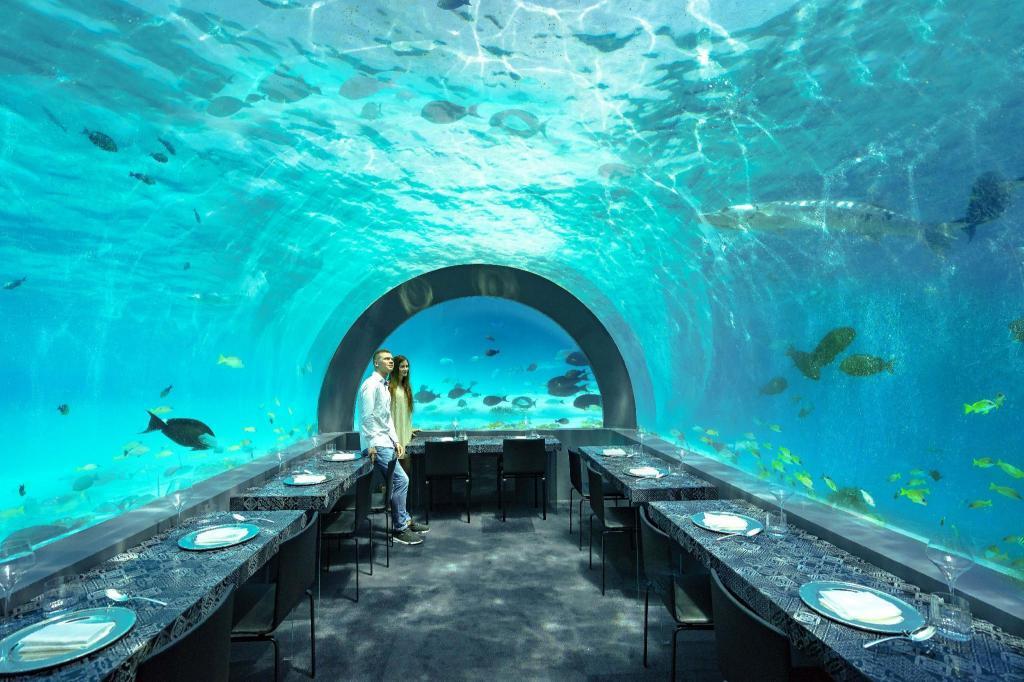 You & Me Maldives | Maldives Islands 2020 UPDATED DEALS ₹18270, HD Photos & Reviews
