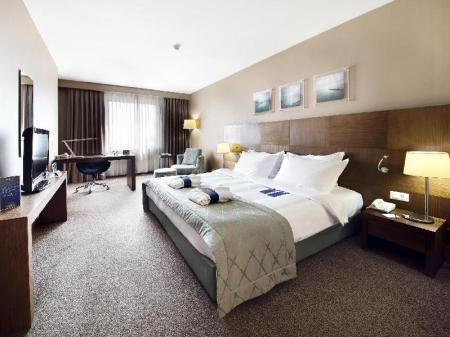 Premium Room Radisson Blu Conference and Airport Hotel
