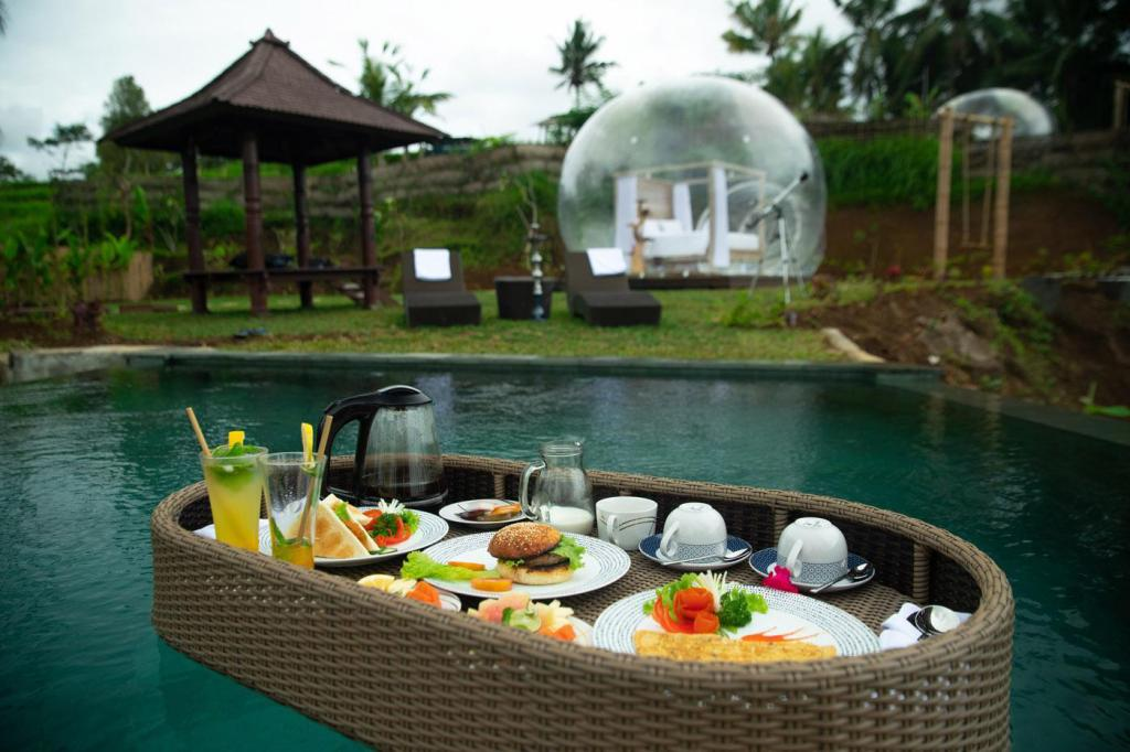 Premier Room with Pool Access - Private pool Romantic Bubble Dome Ubud