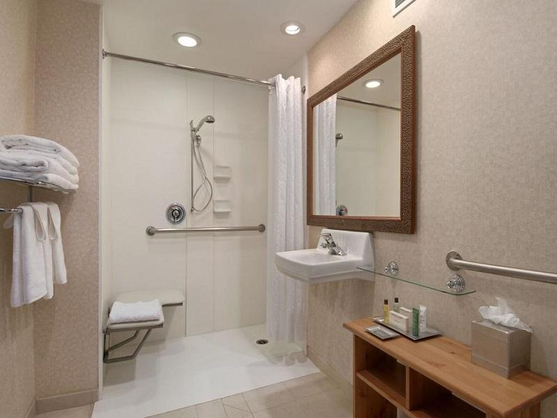 Room with King Bed and Roll-In Shower - Accessible (1 King Accessible with Roll in Shower)