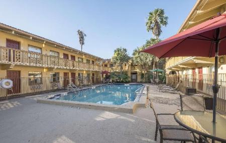 piscină [în aer liber] Red Roof Inn Tampa Bay - St Petersburg