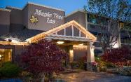 Maple Tree Inn Hotel