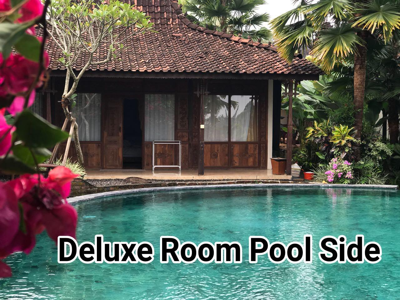 Deluxe Suite - Pool Side