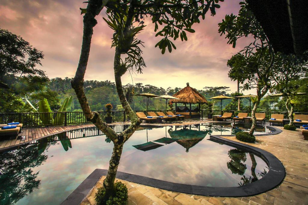 piscină [în aer liber] Nandini Jungle Resort and Spa Bali
