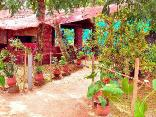 Marari Beachgarden Guest House